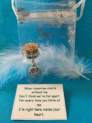 Pet Memorial Pet Hamster Ashes Urn In loving memory Best Pet/Friend