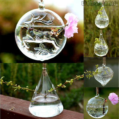 Hanging Glass Hydroponic Flower Planter Vase Terrarium Container Home Garden DIY