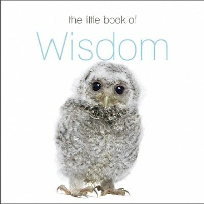 THE LITTLE BOOK OF WISDOM by THE NEXT BIG THINK - BRAND NEW - FREE POSTAGE