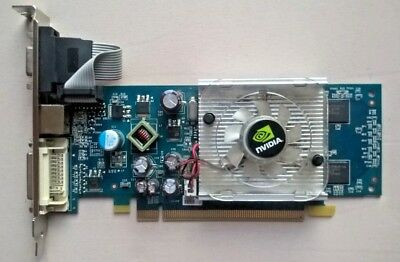 8400GS PCI-E 256MB DDR2 TV-OUT DVI DRIVER FOR WINDOWS DOWNLOAD