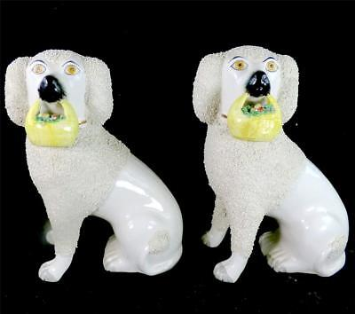 N770 Pair Staffordshire Pottery Poodle With Flower Baskets