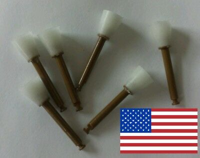 100% ORIGINAL Dentsply Enhance Finishing Cups Dental Composite Polishing