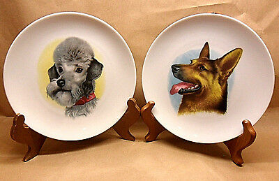 2 Schumann Arzberg Bavaria Germany Golden Crown E&r Dog Portrait Plates