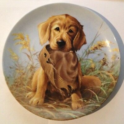 """Golden Retriever - Caught In The Act - 8 1/4"""" - 1987 Knowles Plate Collection"""