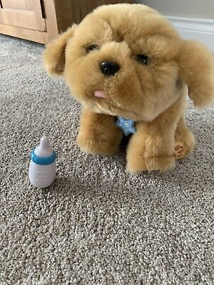 Little Live Pets My Dream Puppy Kids Doll Play Soft Toy VGC Bottle
