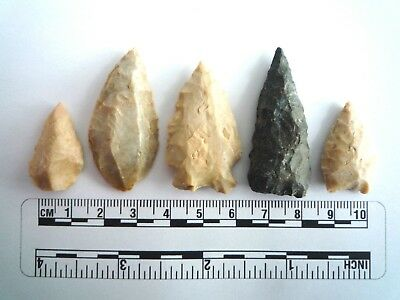 5 x Native American Arrowheads found in Texas, dating from approx 1000BC  (2244)
