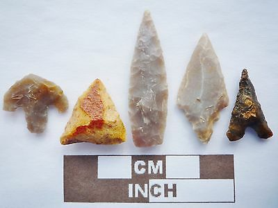 5 x High Quality Neolithic Arrowheads - 5 Different Styles - 4000BC - (K088)