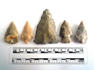 5 x Native American Arrowheads found in Texas, dating from approx 1000BC  (2200)