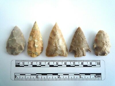 5 x Native American Arrowheads found in Texas, dating from approx 1000BC  (2212)