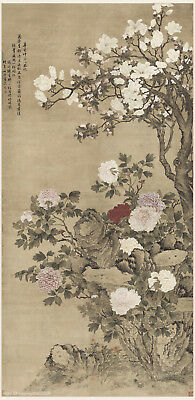 Chinese old scroll painting Flourishing peony flowers in different colors