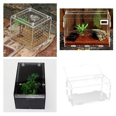 Acrylic Clear Reptile Terrarium Pet Tank Home for Gecko, lizard, Insets, Spider