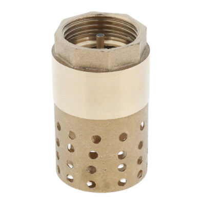 Brass Foot Valve Mesh Check Valve for Pipe Pump w/ Holes Strainer Filter 1''