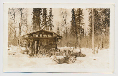 RPPC Hunting Log Cabin Fur Trap Sled Snow Dogs Wilderness Animal Hide Real Photo