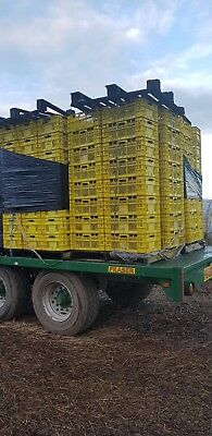 160 Large Plastic Extra Strong Storage Crates
