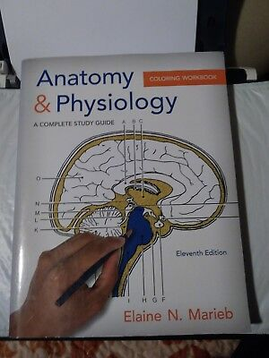 ANATOMY & PHYSIOLOGY Coloring Workbook 9Th Edition - $71.99 ...