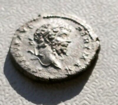 Septimius Severus 193-211 AD EF silver denarius great portrait 19 mm 2.8 grams
