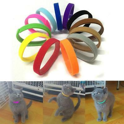 12Pcs Whelping Puppy Pet Dog ID Identification Bands Litter Kitten Cat Collar ON