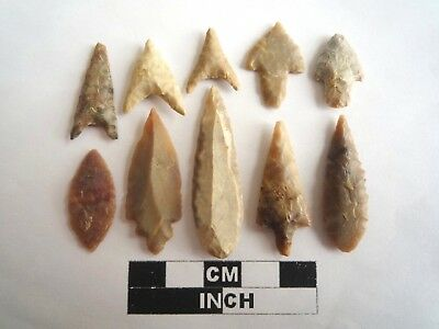 Neolithic Arrowheads x 10, High Quality Selection of Styles - 4000BC - (2130)