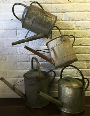 Galvanised Watering Can  - 1 Old Rustic Vintage Garden Florist Prop Planter Pot