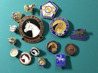 15 vintage International And State  Arabian Horse Association Pins See Photos