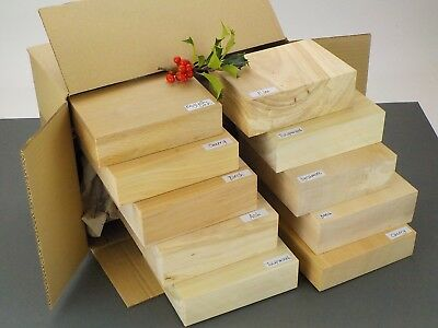 Stick Handle Wood Carving Blanks Pack. Cane & staff making carving wood