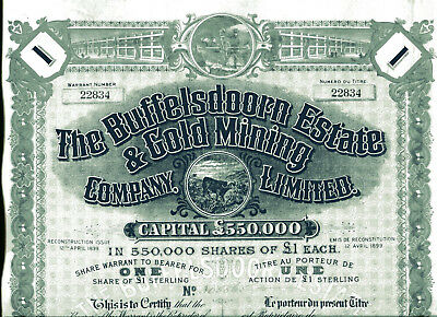 South Africa: The BUFFELSDOORN ESTATE & GOLD MINING COMPANY Limited; one share