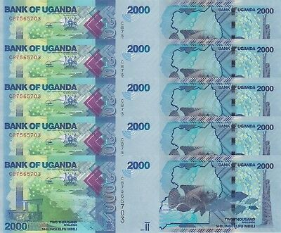 LOT, Uganda 2000 Shillings (2017) p50-New x 5 PCS UNC