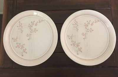"Dinner Plates X 2 Biltons Coloroll ""Trellis"" England Excel Condition Lot 1 Of 3"