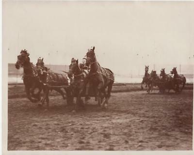 Glasgow Horse Chariot Racing Trial race Course attelage chevaux old Photo 1930'