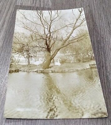 BUILE HILL Park SALFORD Manchester 1909 Real Photograph Postcard SWANS