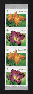 Canada Stamps - Strip of 4 - 2012, Daylilies Orange & Purple Flowers #2527-8 MNH