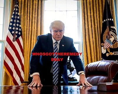 President Donald Trump Leans On His Desk In The Oval Office - 8X10 Photo