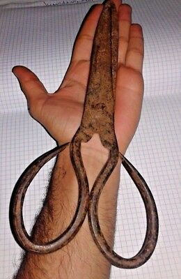 Very Rare Antique 19th Century Large Hard Forged Cast Iron Scissors