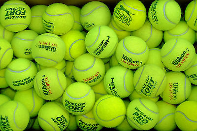 30 Used tennis balls. Excellent condition. Mixed brands.
