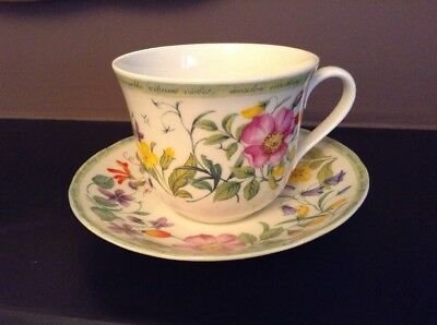 Stunning Roy Kirkham HEDGEROW Jumbo Breakfast Cup And Saucer Year 2000