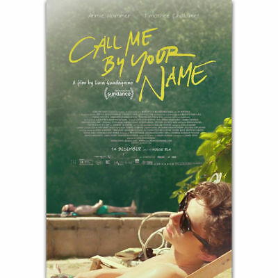 V812 Fabric Poster Call Me By Your Name Movie Luca Guadagnino Film decor 27x40in