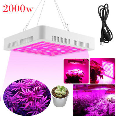 2000W LED Grow Light Hydroponic Plants Flowers Growing Full Spectrum Panel Lamp