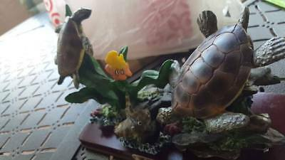 Vintage Antique CK Collection Turtles And Sea Life 1980 on wood base , G