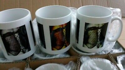 Wholesale Job Lot Erotic Mugs 36 Lady in Basque Market shop cafe stock clearance