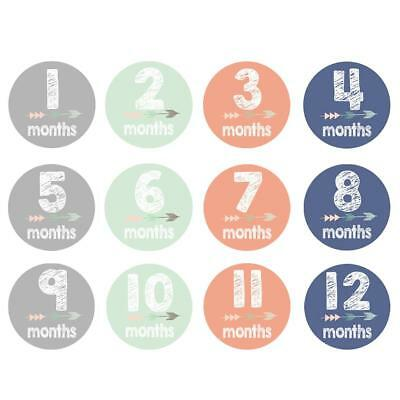 12pcs Baby Women Monthly Photograph Sticker Set Cartoon Months Decor Stickers