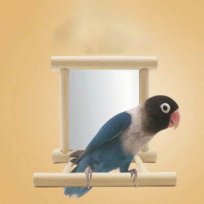 Bird Mirror & Perch Wooden Interactive Bird Toys Budgie Canary Cockatiel Finc RU