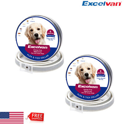 "2x 25"" Flea & Tick Collar for Cats Pet 6 Months Protection Adjustable Waterproof"
