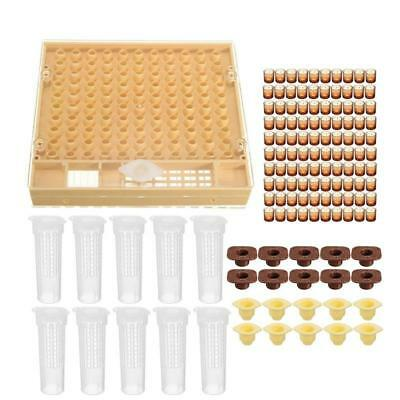 100*Brown Cell Cups System Beekeeping Queen Rearing Cupkit Box Cupularve Tool.