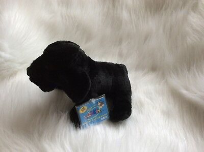 Webkinz Black Lab Hm136 + 2 Packs  Webkinz Trading Cards- New W/ Sealed Code