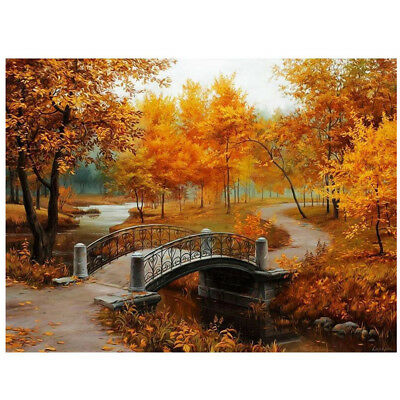 16*20 inch DIY Paint By Number Kit Digital Oil Painting Canvas Beautiful Sc D6W1