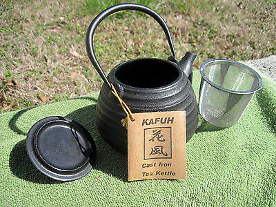 Oriental Japan Kafuh Black Cast Iron Tea Kettle Teapot Signed