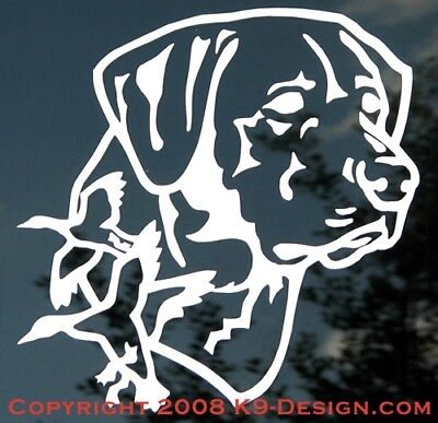 Labrador Retriever Headstudy With Ducks-Sticker/decal - Approx 4''x6''