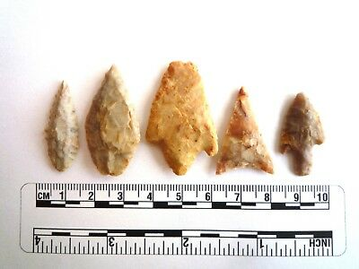 Neolithic Arrowheads x 5, High Quality Selection of Styles - 4000BC - (2443)