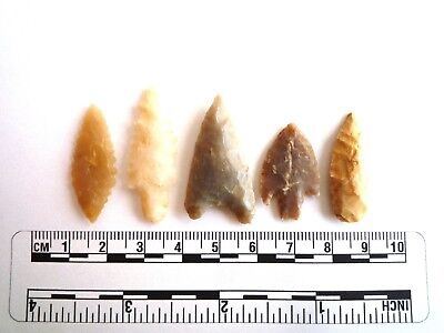 Neolithic Arrowheads x 5, High Quality Selection of Styles - 4000BC - (2442)