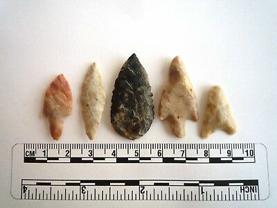 Neolithic Arrowheads x 5, High Quality Selection of Styles - 4000BC - (2444)